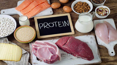Muscle, Recovery, And Results: The Role Of Protein In Bodybuilding