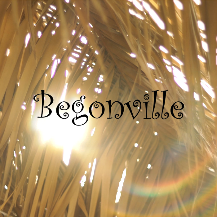 Welcome to the New Begonville