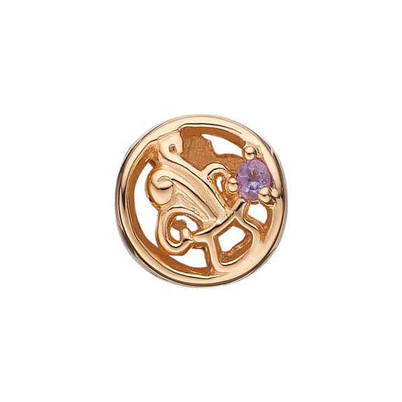 Zodiac Aquarius Bead Charm Gold with Gemstones