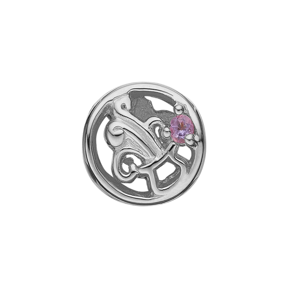 Zodiac Aquarius Bead Charm Silver with Gemstones