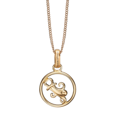 Load image into Gallery viewer, Zodiac Aquarius Necklace Gold