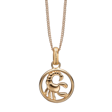 Load image into Gallery viewer, Zodiac Scorpio Necklace Gold
