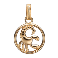 Load image into Gallery viewer, Zodiac Scorpio Pendant Gold