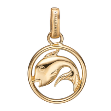 Load image into Gallery viewer, Zodiac Pisces Pendant Gold
