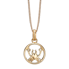 Load image into Gallery viewer, Zodiac Cancer Necklace Gold