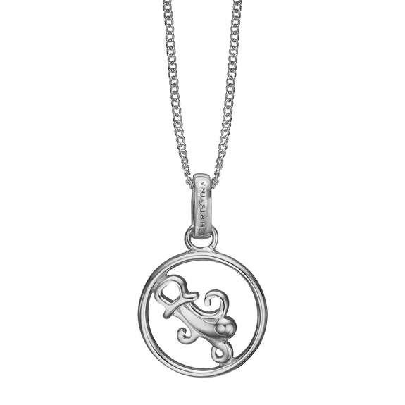 Zodiac Aquarius Necklace Silver
