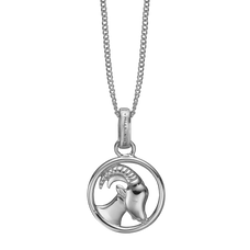 Load image into Gallery viewer, Zodiac Capricorn Necklace Silver