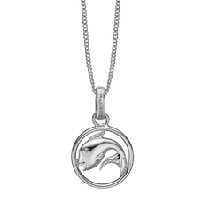 Load image into Gallery viewer, Zodiac Pisces Necklace Silver