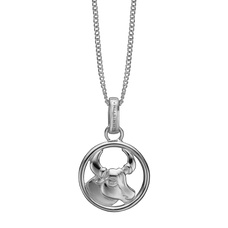 Load image into Gallery viewer, Zodiac Taurus Necklace Silver