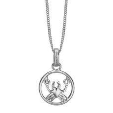 Load image into Gallery viewer, Zodiac Cancer Necklace Silver