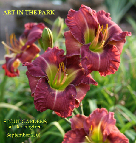 Daylily Art In The Park
