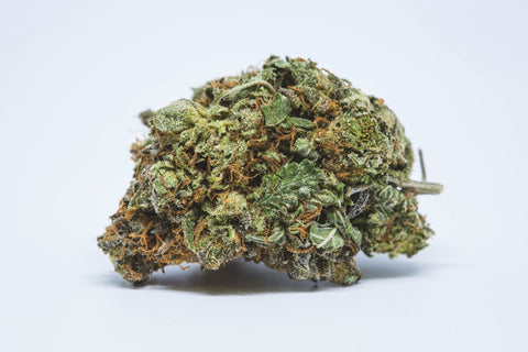 Purple Kush - Weed - Strain - Which strain is best for you