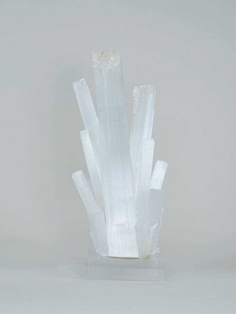 Selenite Crystal Burst on Acrylic Base W