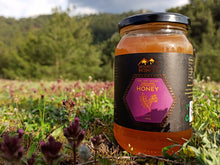 Load image into Gallery viewer, HIGHLAND ASTRAGALUS HONEY - RAW