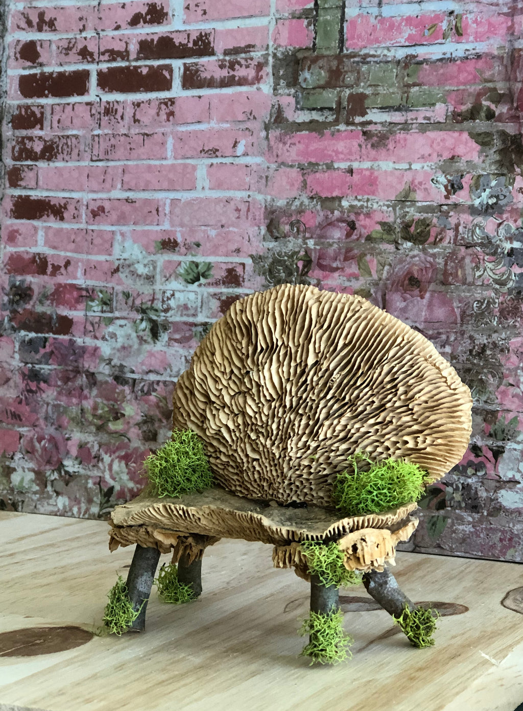 Mushroom Bench with Herb Pots by Olive