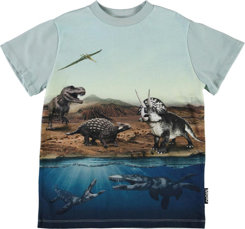 Jungen T-Shirt Road Dino World