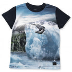 Jungen T-Shirt Raymont Melting Ice