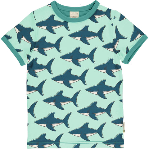 Jungen T-Shirt Top SS Shark