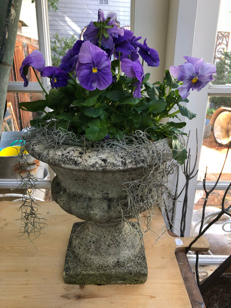 French concrete urns