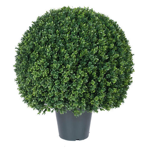Topiary Ball in Pot