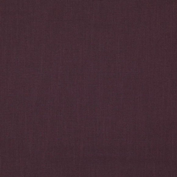 Duck dark plum