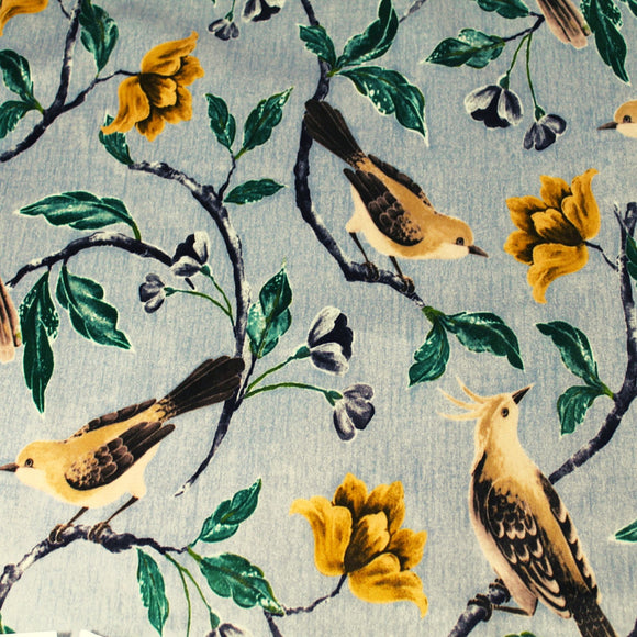 Everyone loves bird prints including us! This fun printed fabric for furniture upholstery has a brushed micro suede finish which is great for pets, especially cats.