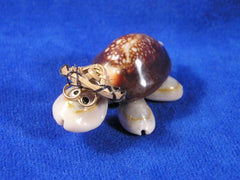 Tortue en coquillages cauris