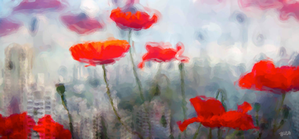 Poppies in the City