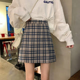 Women's Skirt Fashion New Plaid Skirt