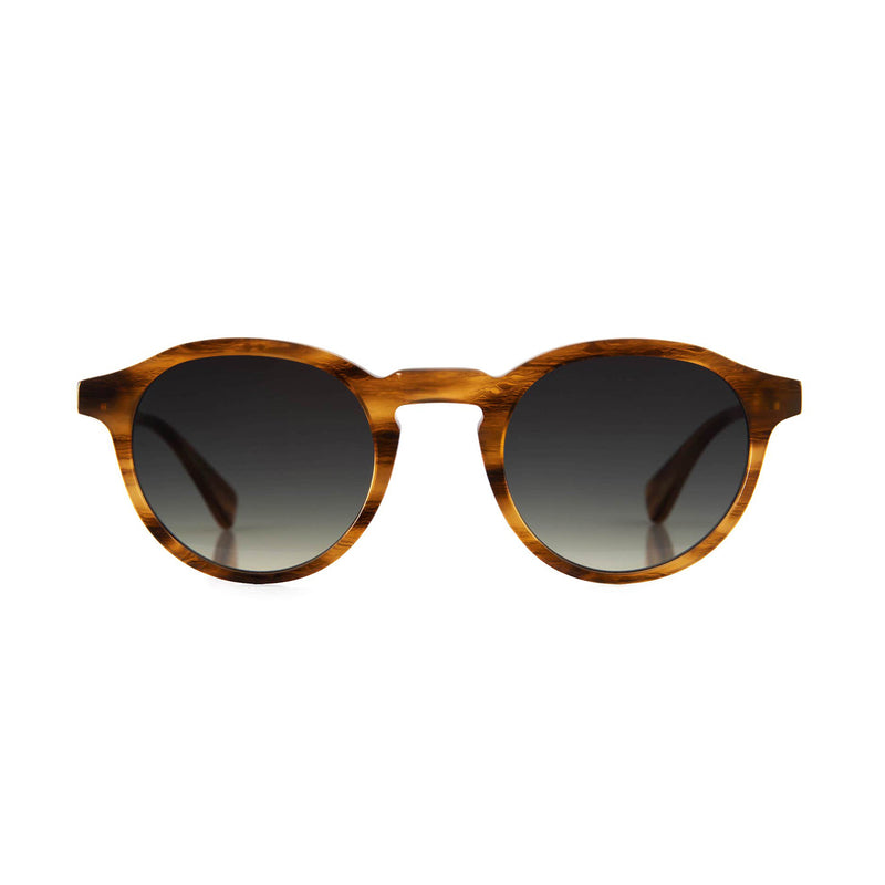 Alex Sunglasses in Honey