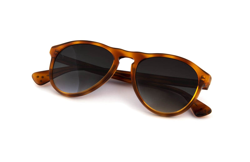 Paul Sunglasses in Caramel