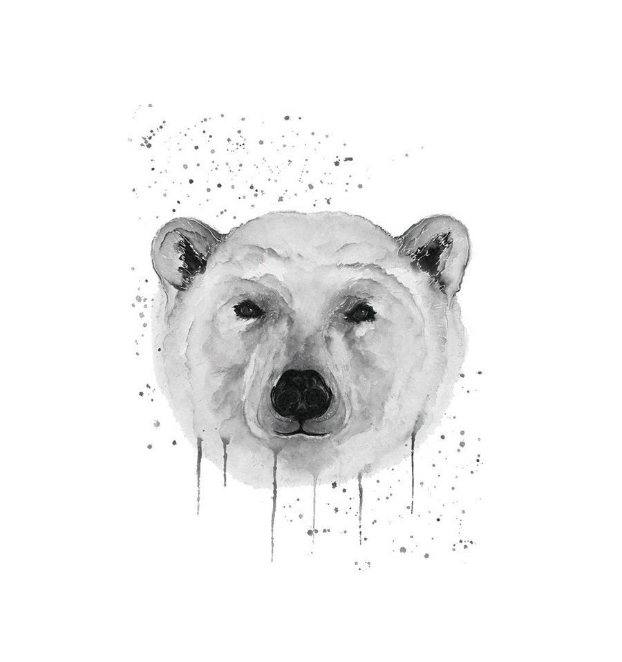 ICE° Bottle WWF Polar Bear (monochrome)