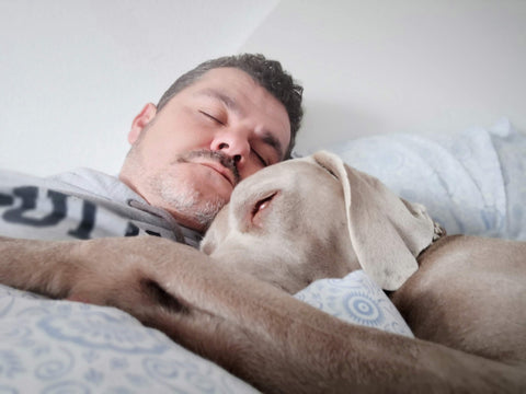 sleeping with dog at home