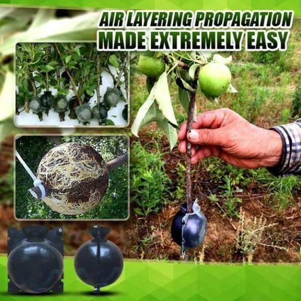 Plant Root Growing Box-Revolutionary Air-Propagation System
