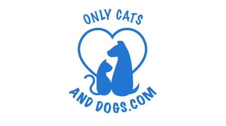 Only For Cats and Dogs