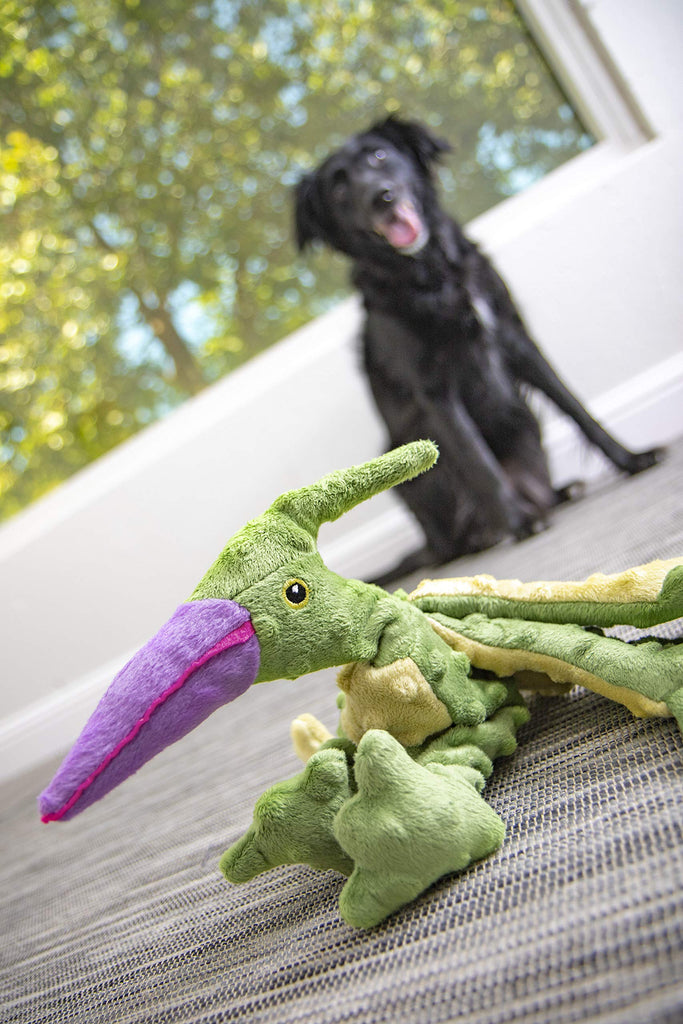 Dinos Terry The Terradactyl Dog Toy