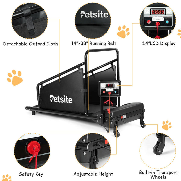 BestDog™ Deluxe Dog Treadmill with Remote and LCD Screen