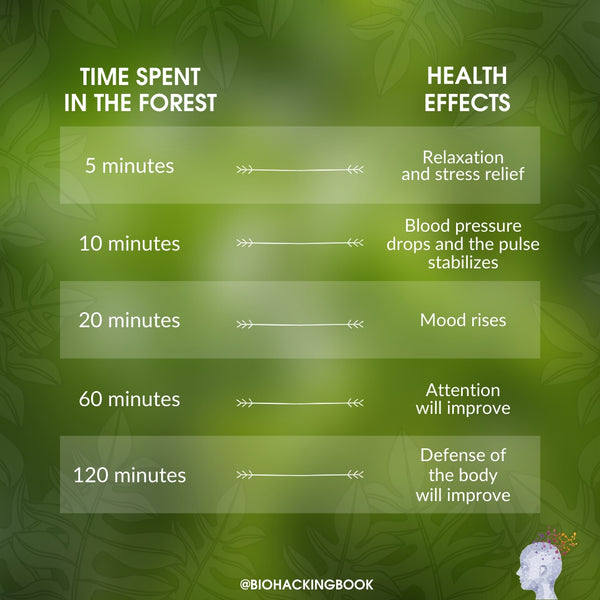 time spent in the forest