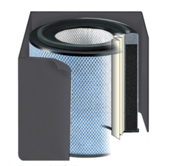 Austin Air Bedroom Machine® Replacement Filter (FR402)