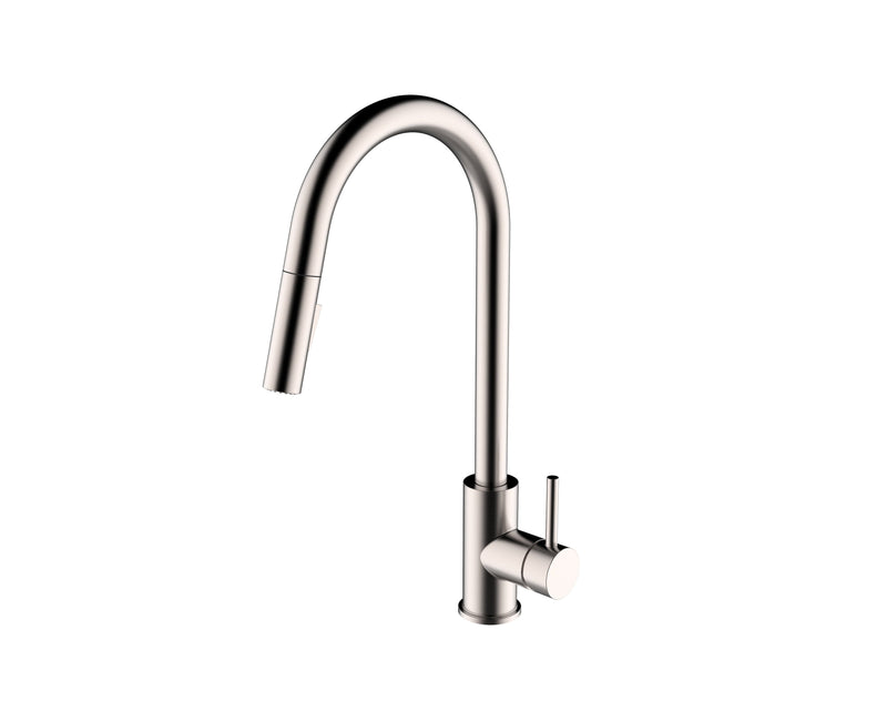 F100137 - Kitchen Faucet with Pull Down Spray
