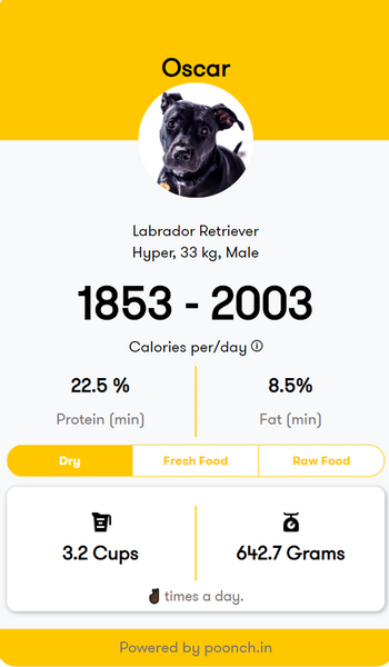 Food Chart for Labradors, results of diet calculator for dogs