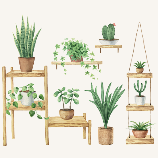 Plant Aesthetic in the Home
