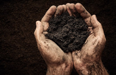 The planet's soil