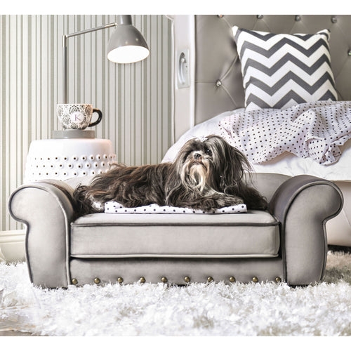 Schnauzer Traditional Grey Pet Sofa