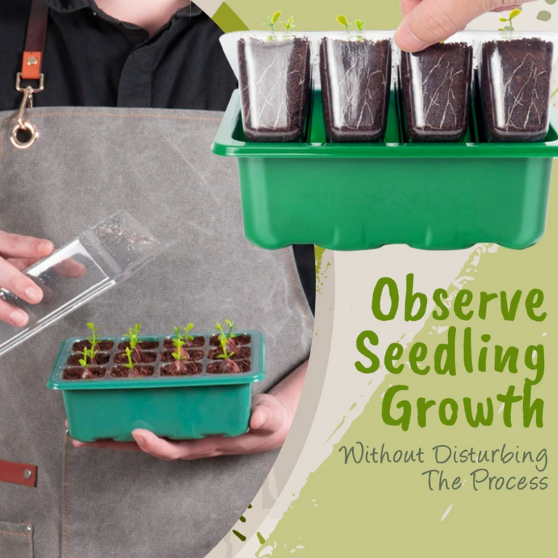 Mini Greenhouse Seed Starter Tray