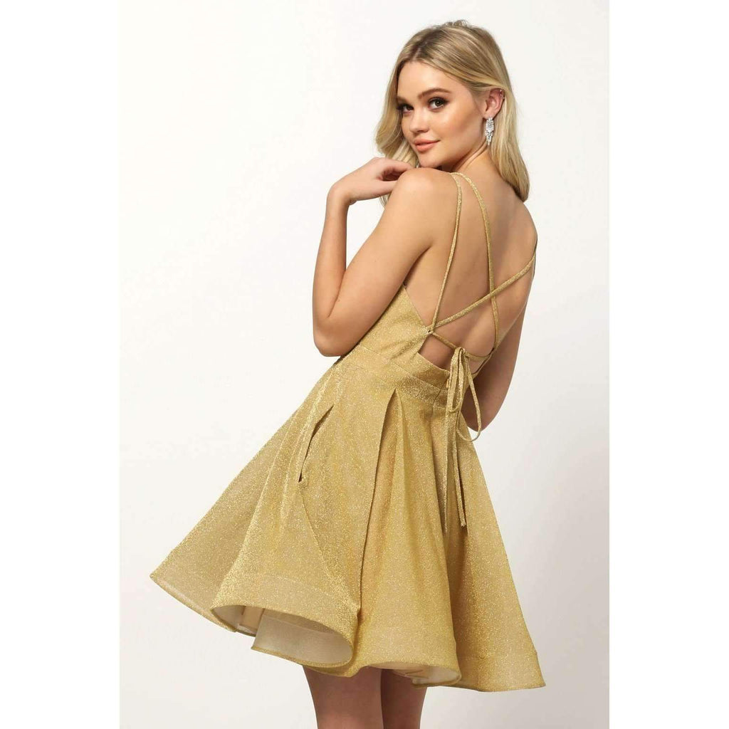 V-Neckline A-Line Short Homecoming Dress JT832
