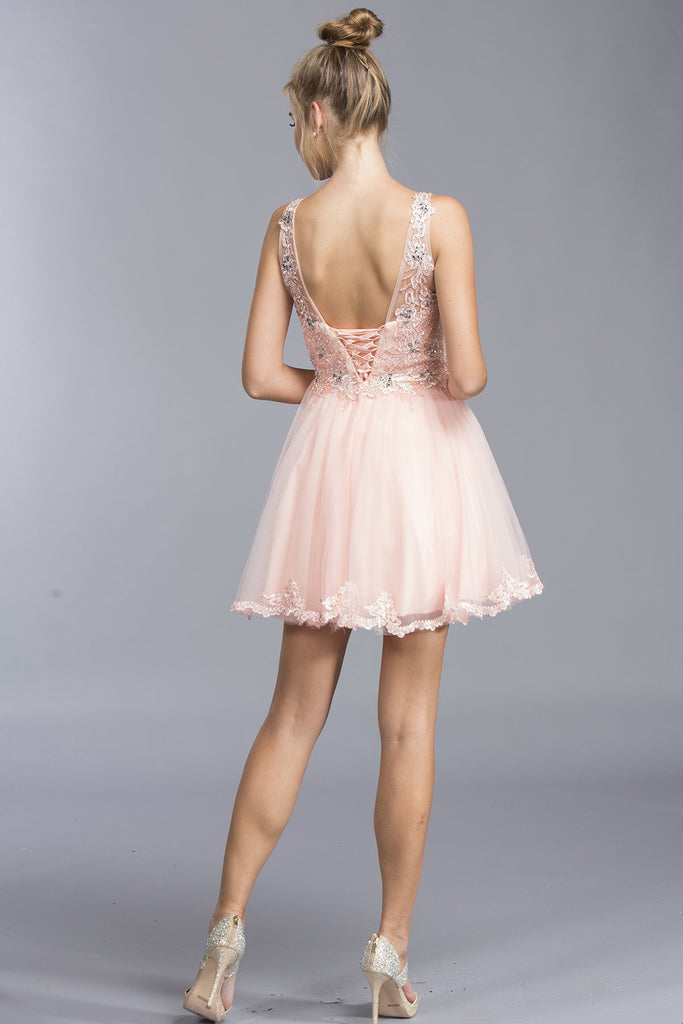 Illusion Cocktail Short Gowns With Open V-back APS1962-Party Dresses-Alwaysprom.com