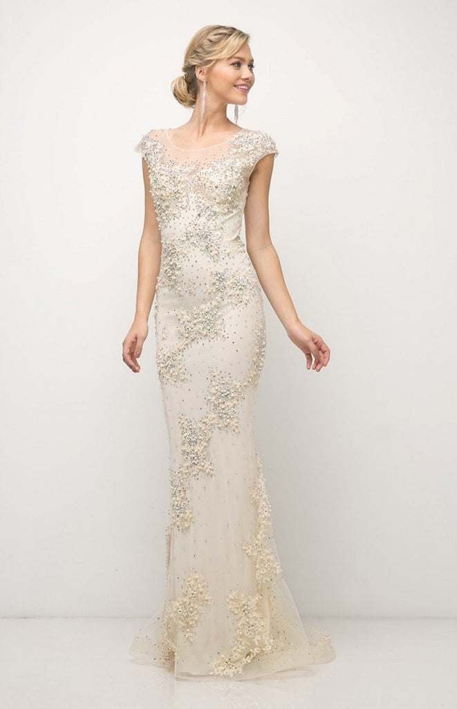 NEW Beaded Bodice Illusion Neckline Sheath Long Evening Gown CD8983