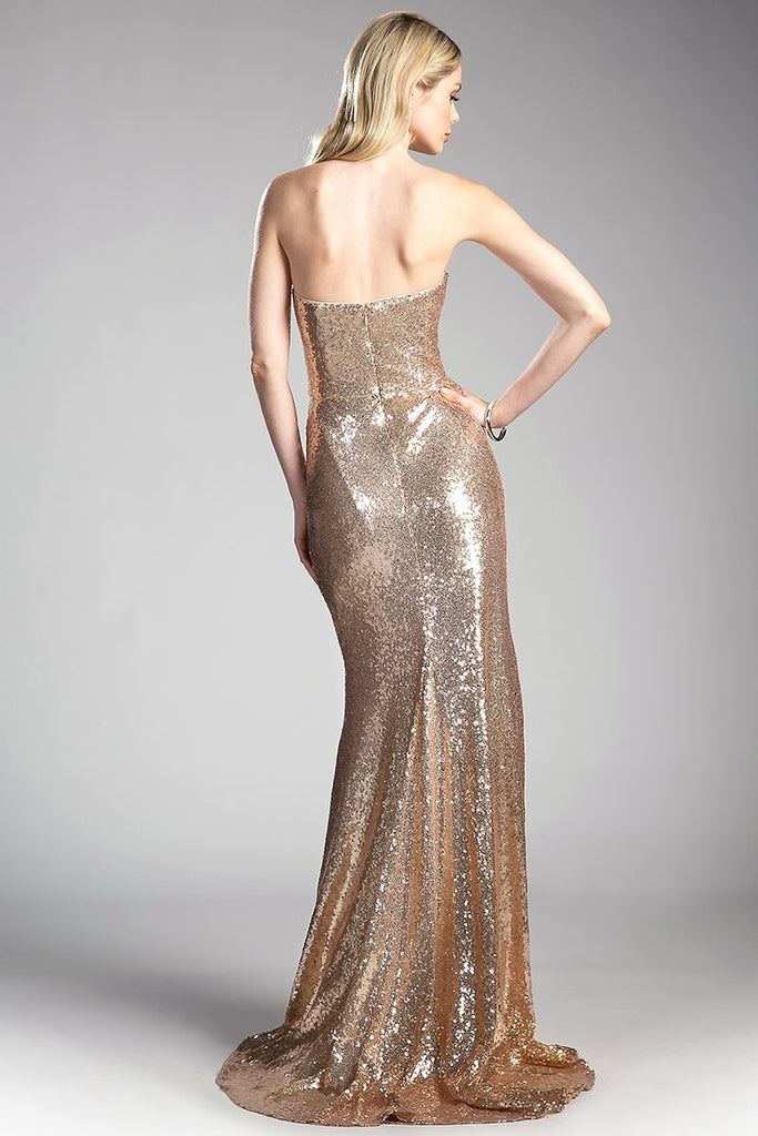 Sleeveless Elegant Cute Evening Gowns CDCH561-Long Dresses-alwaysprom.com