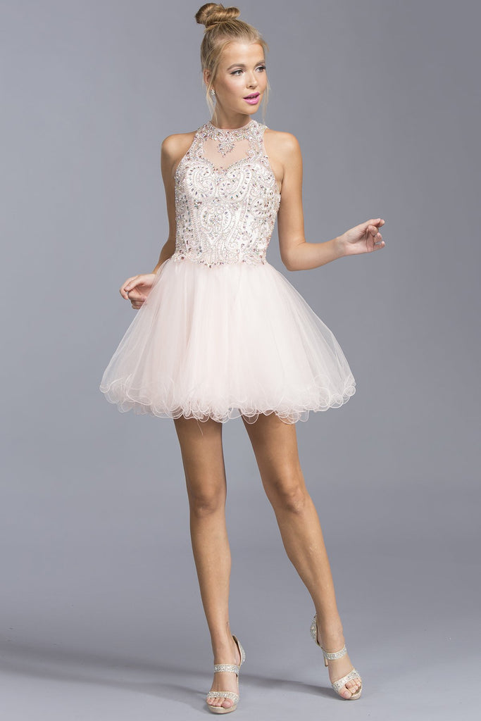 Illusion A-line Party Dress APS1916-Party Dresses-alwaysprom.com